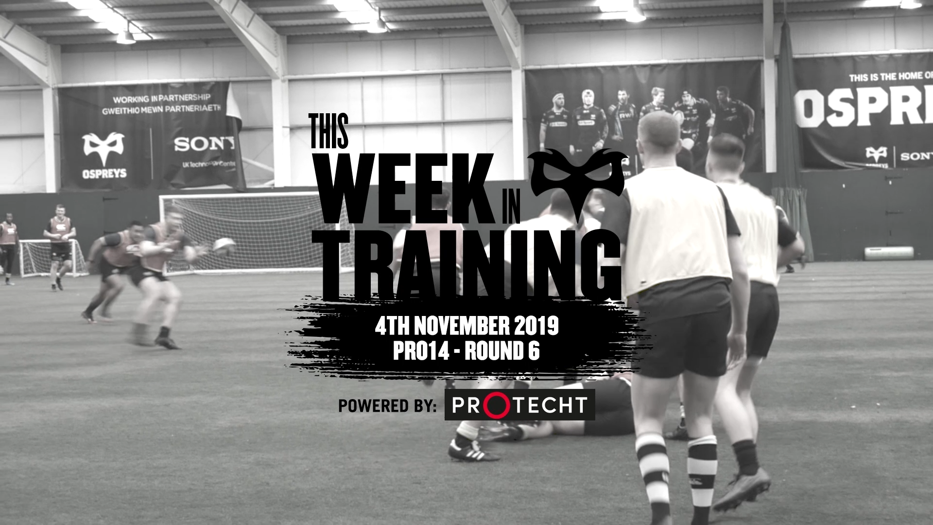 This Week In Training 4th November